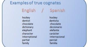 true cognates